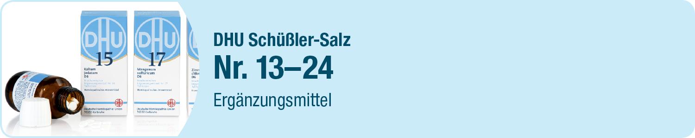 DHU Schüßler Salze 13-24