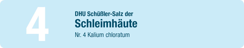DHU Schüßler Salze 4