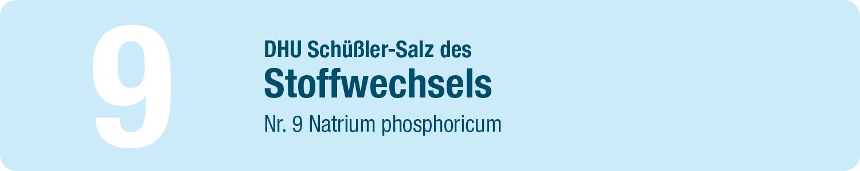 DHU Schüßler Salze 9