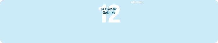 DHU Schüßler-Salz Nr.12