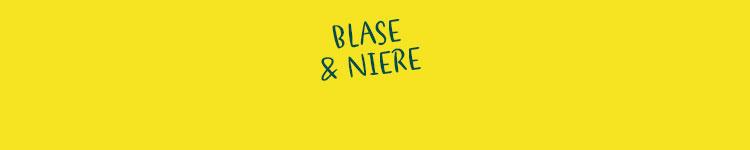 Blase & Niere