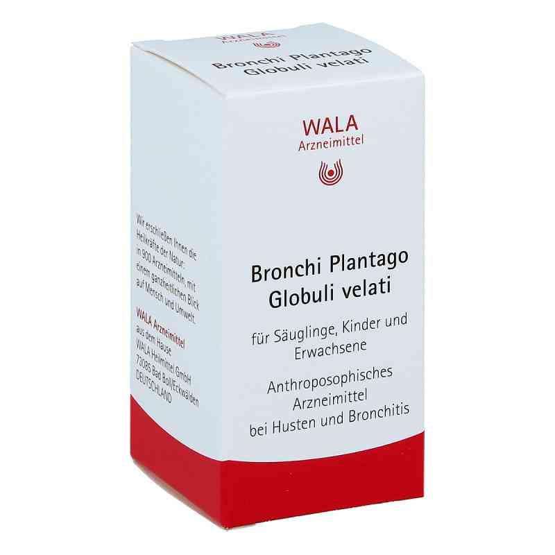 Bronchi Plantago Globuli velati  bei apo-discounter.de bestellen