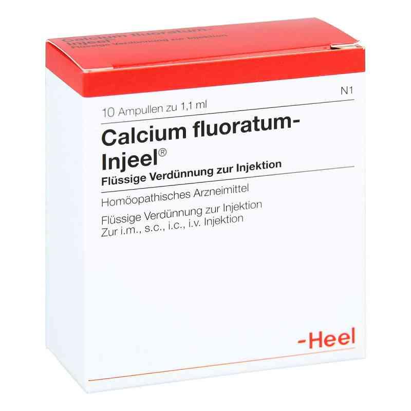 Calcium Fluoratum Injeel Ampullen  bei apo-discounter.de bestellen
