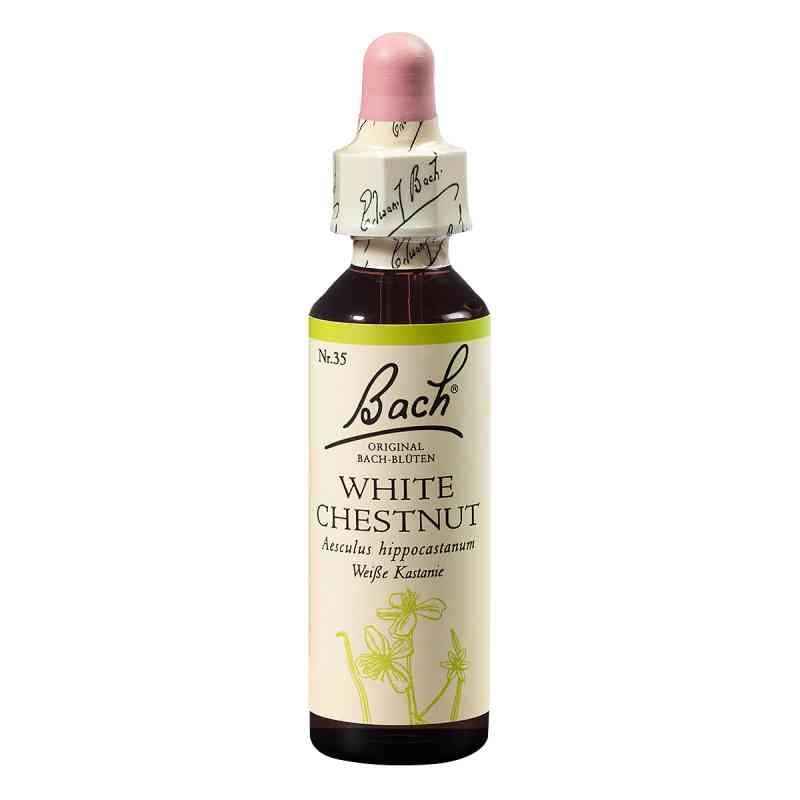 Bachblüten White Chestnut Tropfen  bei apo-discounter.de bestellen