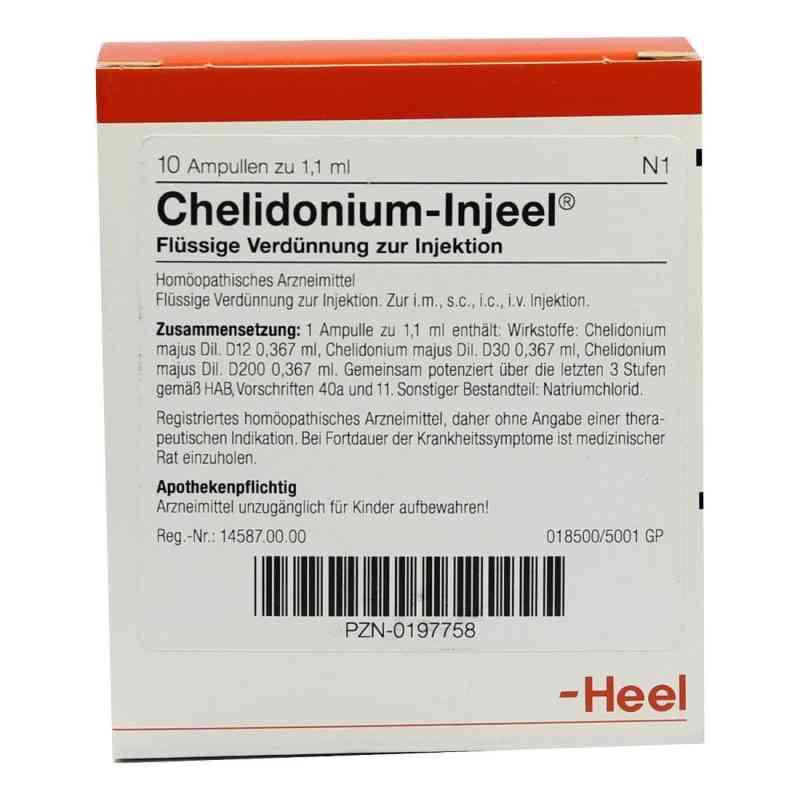 Chelidonium Injeel Ampullen  bei apo-discounter.de bestellen