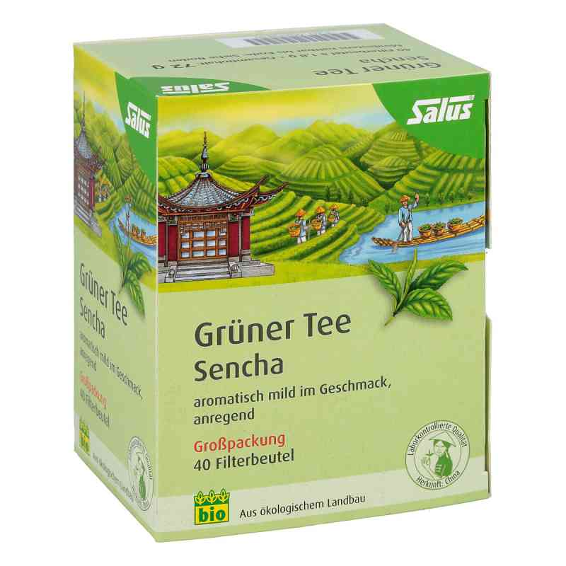 Grüner Tee bio Salus Filterbeutel Grosspackung  bei apo-discounter.de bestellen
