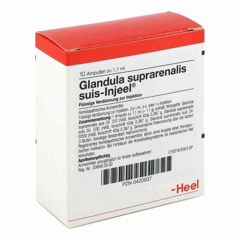 Glandula Suprarenalis suis Injeel Ampullen  bei apo-discounter.de bestellen