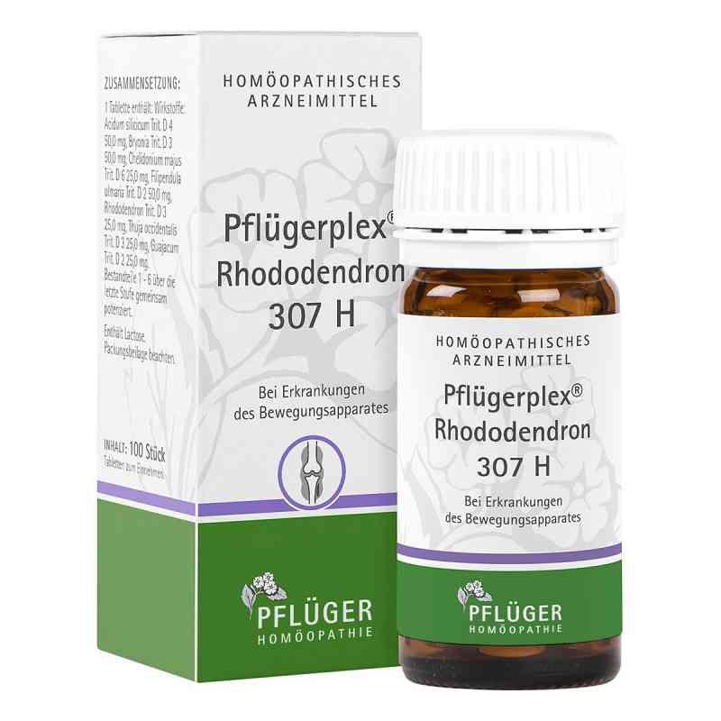 Pflügerplex Rhododendron 307 H Tabletten  bei apo-discounter.de bestellen