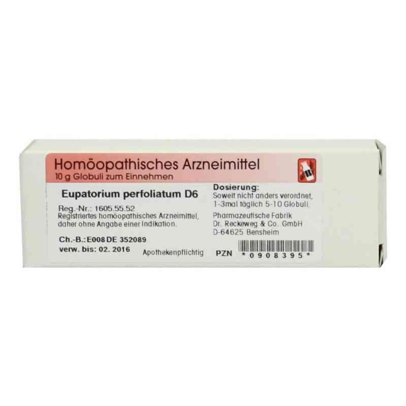 Eupatorium Perfoliatum D 6 Globuli  bei apo-discounter.de bestellen