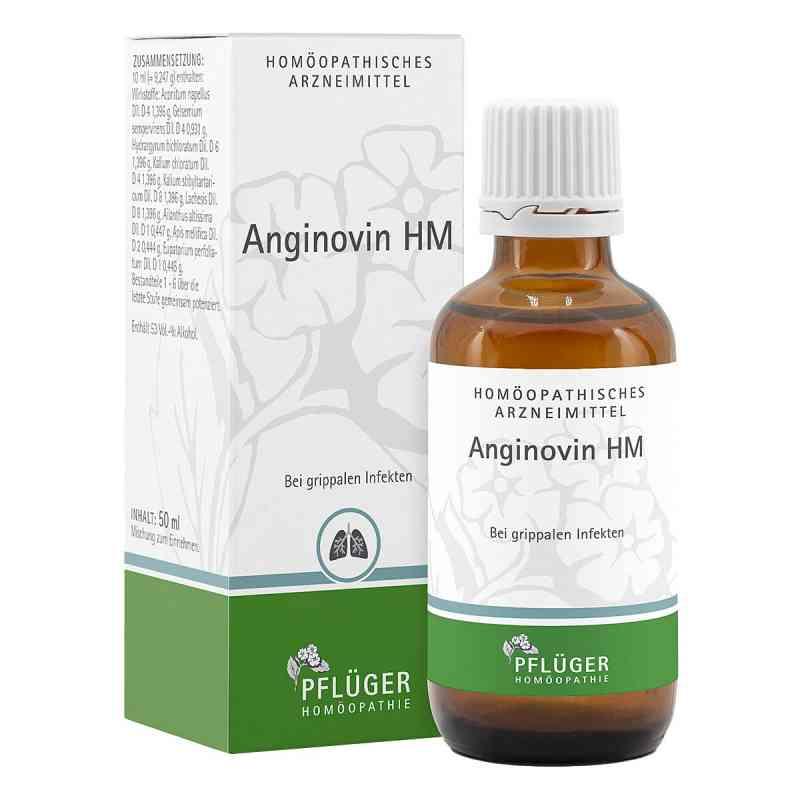 Anginovin Hm Tropfen  bei apo-discounter.de bestellen