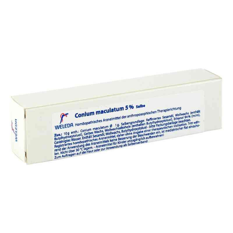 Conium Maculatum 5% Salbe  bei apo-discounter.de bestellen