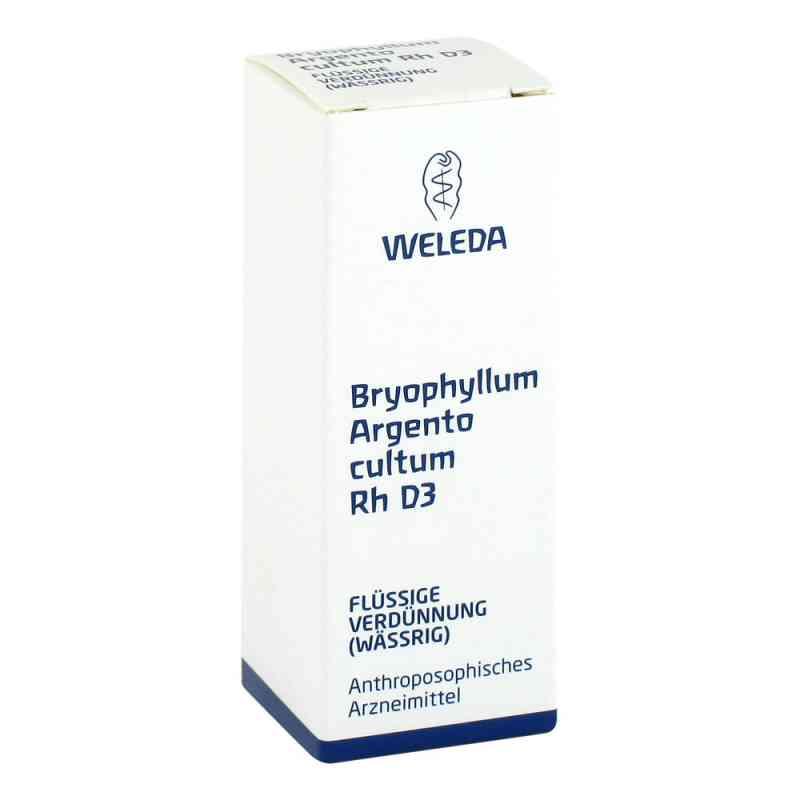 Bryophyllum Argento Cultum Rh D3 Dilution  bei apo-discounter.de bestellen