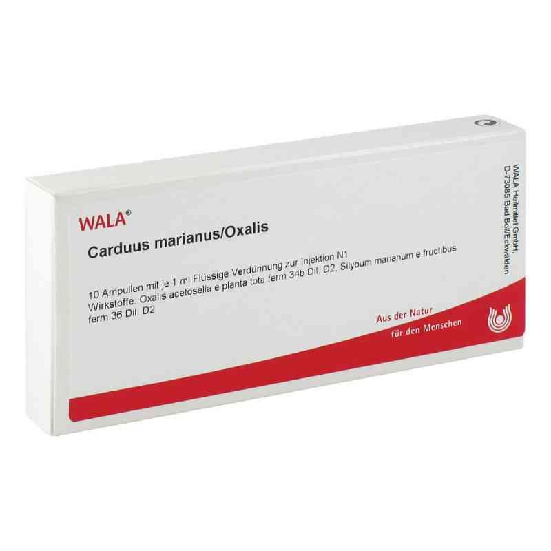 Carduus Marianus/ Oxalis Ampullen  bei apo-discounter.de bestellen