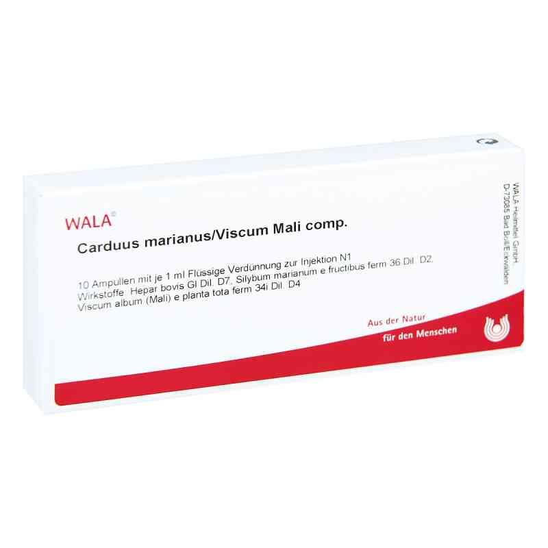 Carduus Marianus/ Viscum Mali Comp. Ampullen  bei apo-discounter.de bestellen