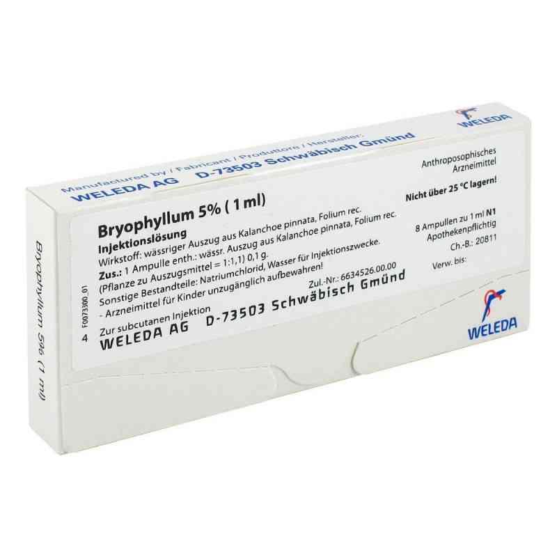 Bryophyllum 5% 1 ml Injektionslösung  bei apo-discounter.de bestellen
