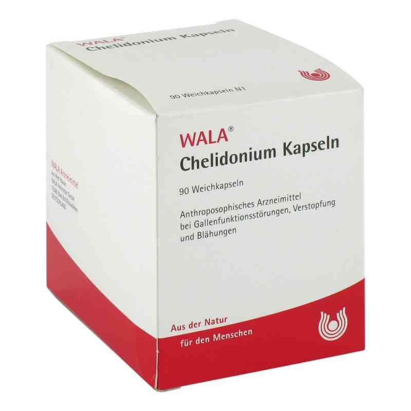 Chelidonium Kapseln  bei apo-discounter.de bestellen