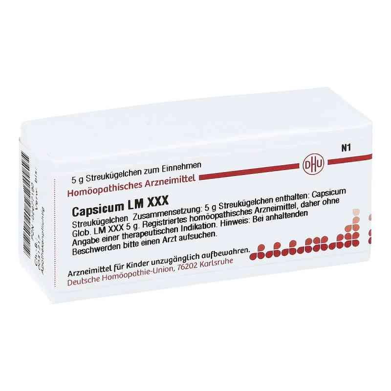 Lm Capsicum Xxx Globuli  bei apo-discounter.de bestellen