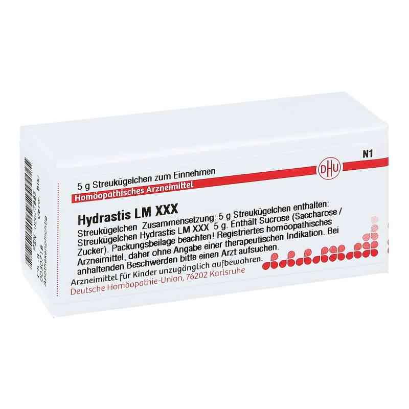 Lm Hydrastis Xxx Globuli  bei apo-discounter.de bestellen