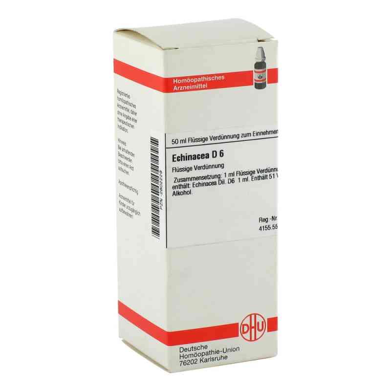 Echinacea Hab D6 Dilution  bei apo-discounter.de bestellen