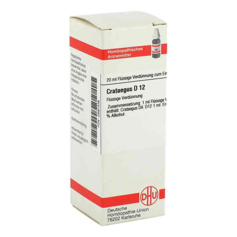 Crataegus D12 Dilution  bei apo-discounter.de bestellen