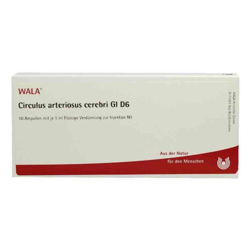 Circulus Arterios. Cer. Gl D6 Ampullen  bei apo-discounter.de bestellen