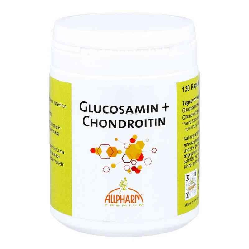 Glucosamin+chondroitin Kapseln  bei apo-discounter.de bestellen