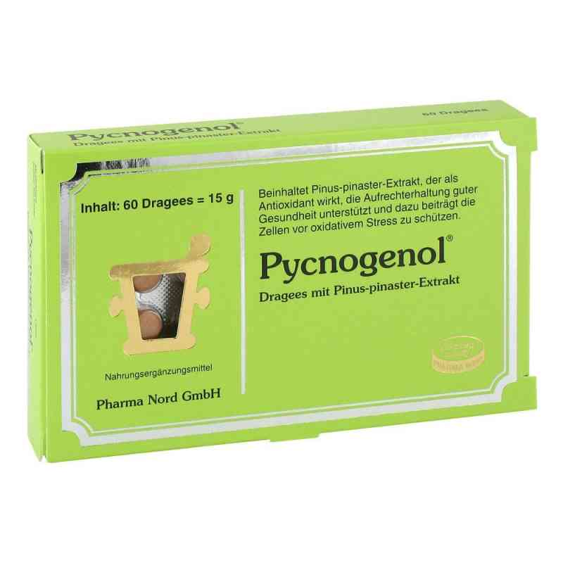 Pycnogenol Kiefernrindenextrakt Dragees  bei apo-discounter.de bestellen