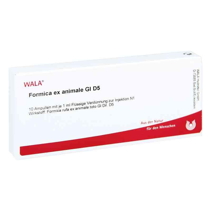 Formica Ex Animale Gl D5 Ampullen  bei apo-discounter.de bestellen