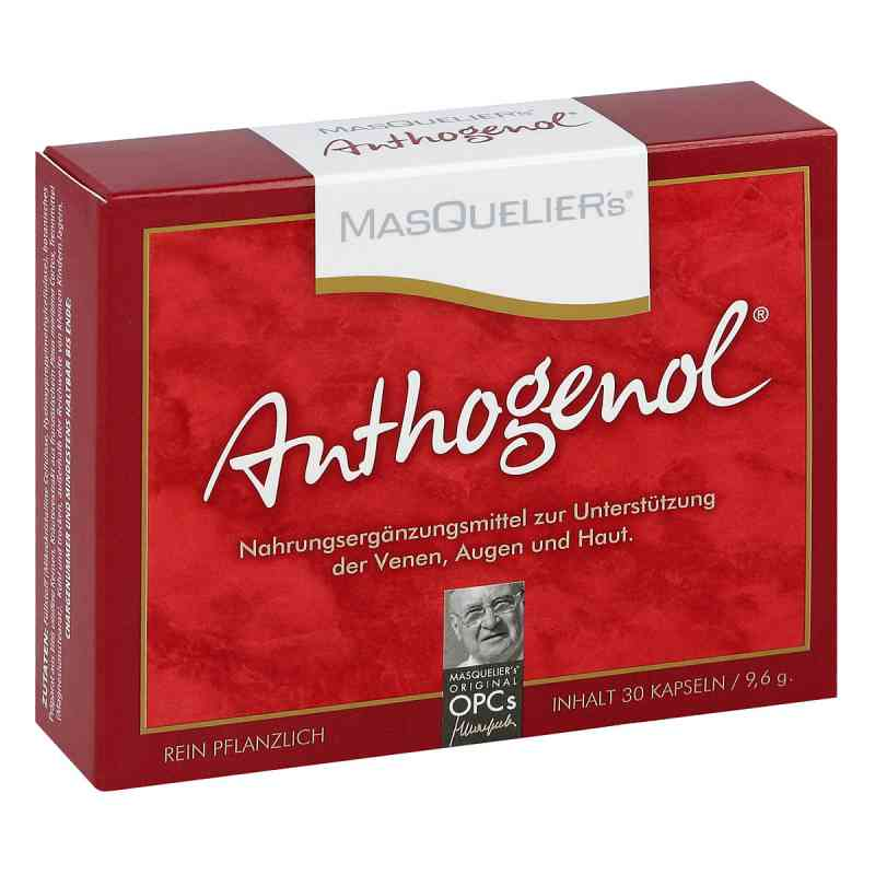Anthogenol Masquelier Opc Kapseln  bei apo-discounter.de bestellen