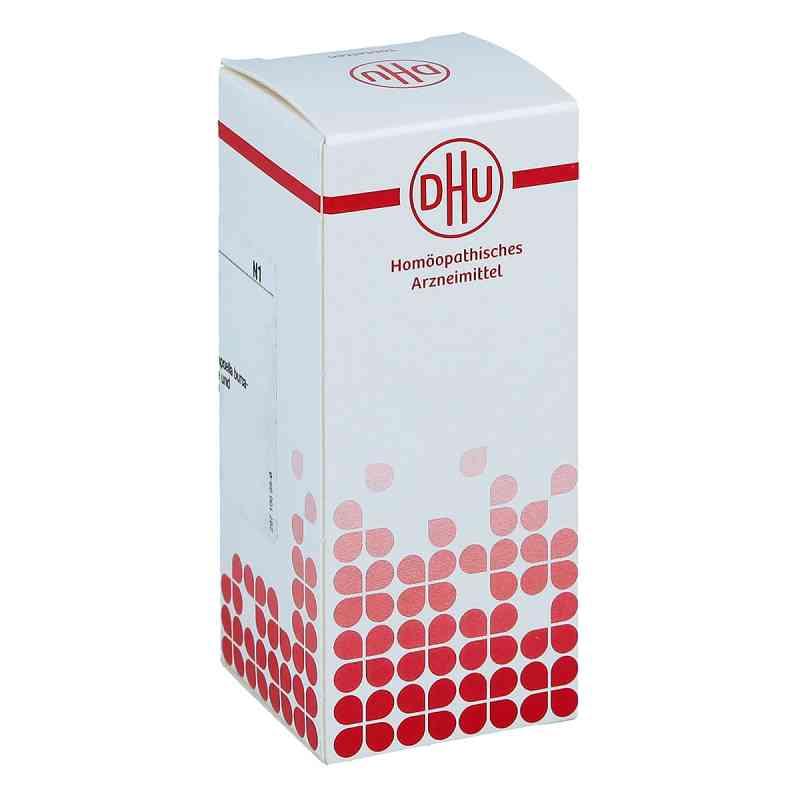 Capsella Bursa Past. D4 Tabletten  bei apo-discounter.de bestellen
