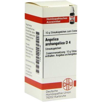 Angelica Archangelica D 4 Globuli  bei apo-discounter.de bestellen