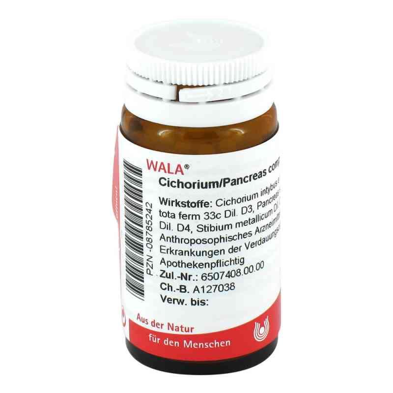 Cichorium Pancreas Comp. Globuli  bei apo-discounter.de bestellen