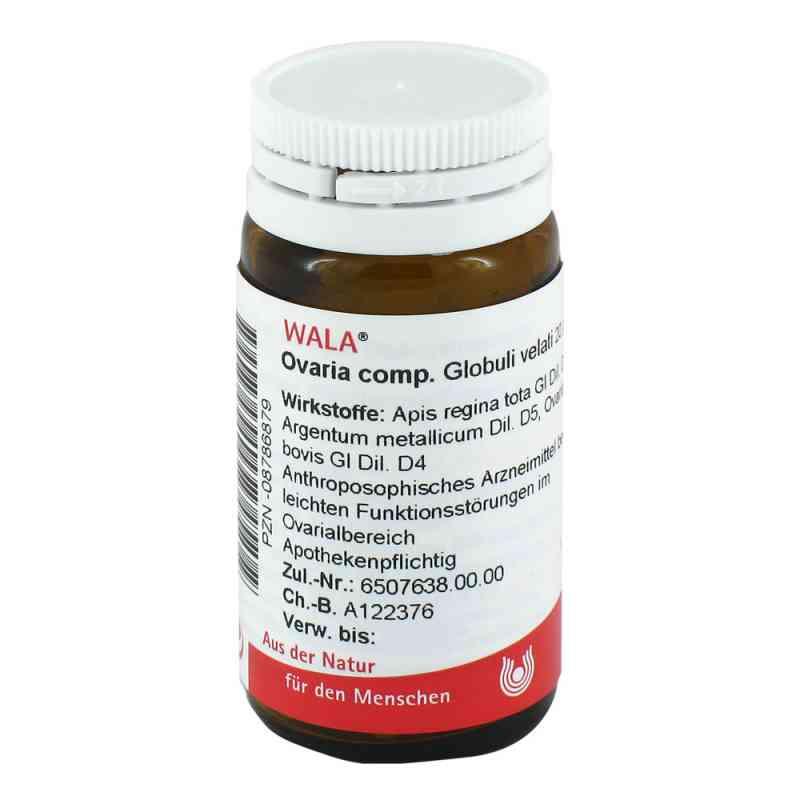 Ovaria Comp. Globuli  bei apo-discounter.de bestellen