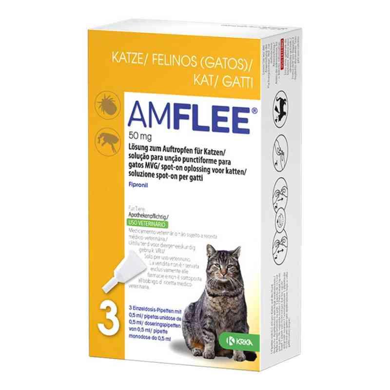 Amflee 50 mg Lösung zum Auftropfen für Katzen   bei apo-discounter.de bestellen