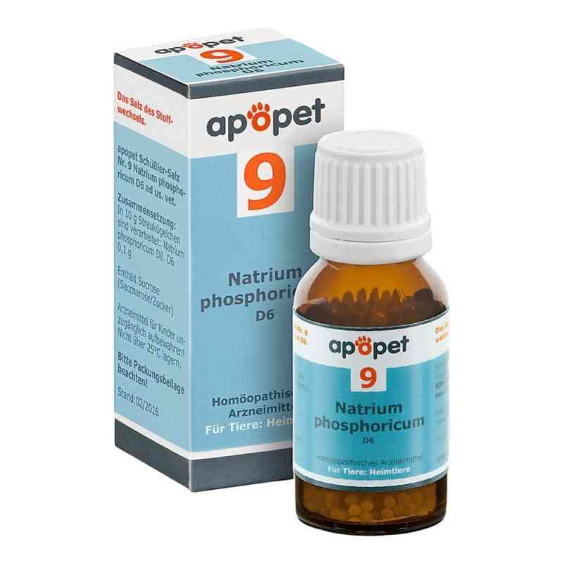 Apopet Schüssler-salz Nummer 9  Natrium phosphoricum D  6 veteri  bei apo-discounter.de bestellen