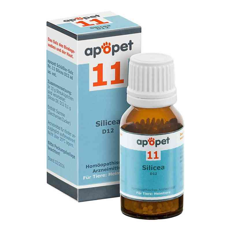 Apopet Schüssler-salz Nummer 11 Silicea D12 Globuli veterinär  bei apo-discounter.de bestellen