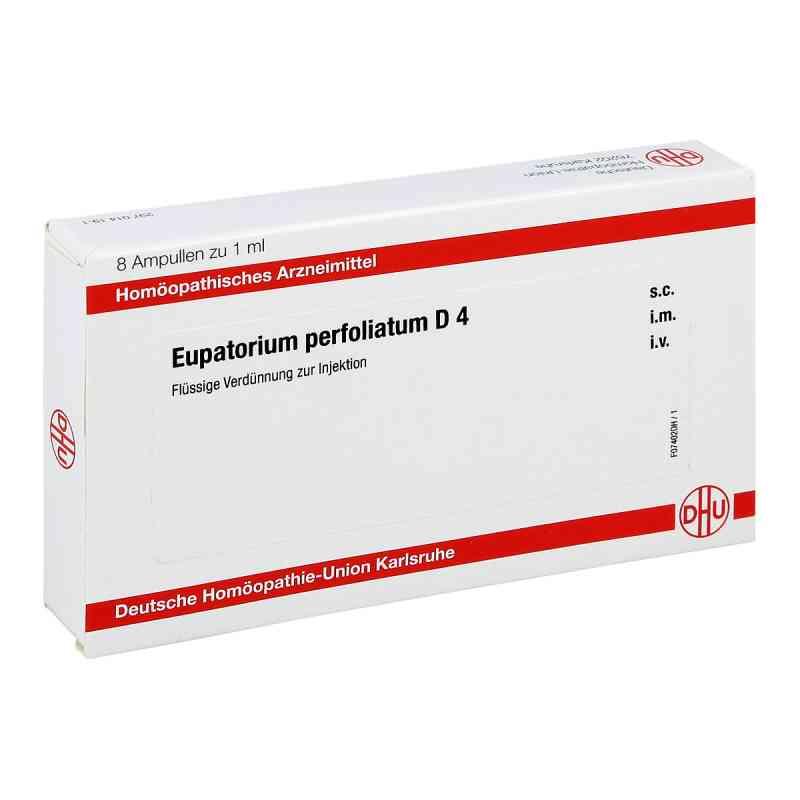 Eupatorium Perfoliatum D 4 Ampullen  bei apo-discounter.de bestellen