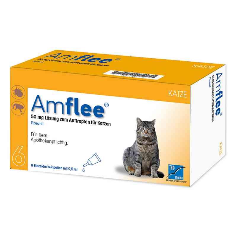 Amflee 50 mg Spot-on Lösung zur, zum Auftropfen für Katzen  bei apo-discounter.de bestellen
