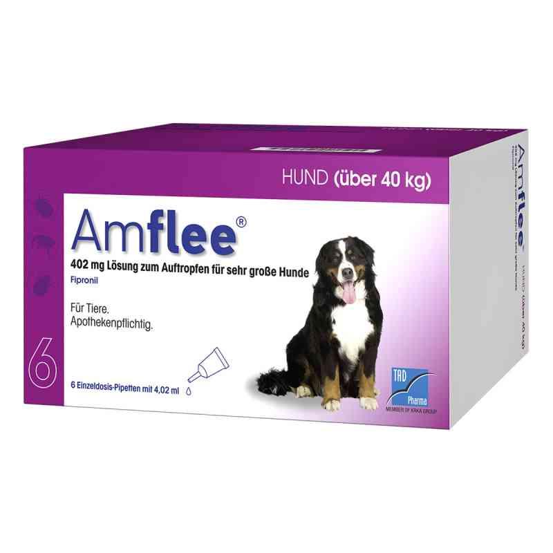 Amflee 402 mg Spot-on Lösung für sehr gr.Hunde 40-60kg  bei apo-discounter.de bestellen