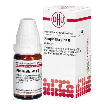 Pimpinella Alba Urtinktur  bei bioapotheke.de bestellen