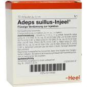 Adeps Suillus Injeel Ampullen  bei apo-discounter.de bestellen