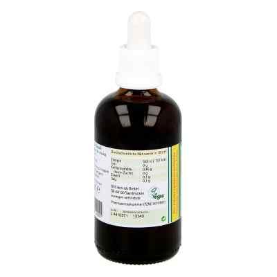 Koriander Extrakt Bio 23% V/v  bei apo-discounter.de bestellen
