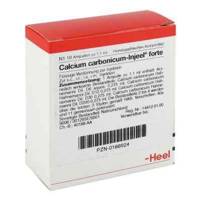 Calcium Carbonicum Injeel forte Ampullen  bei apo-discounter.de bestellen