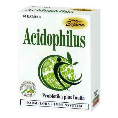 Acidophilus Kapseln  bei apo-discounter.de bestellen