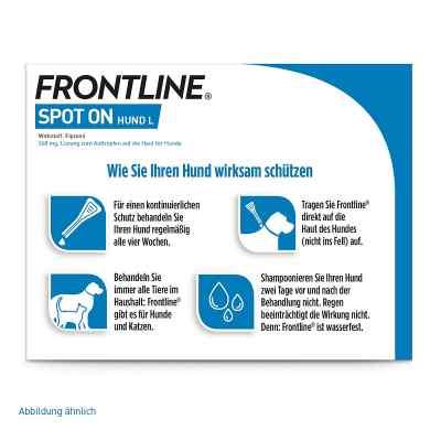 Frontline Spot on Hund 40 veterinär Lösung gegen Floh und Zecke  bei apo-discounter.de bestellen