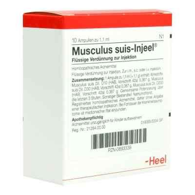 Musculus suis Injeel Ampullen  bei apo-discounter.de bestellen