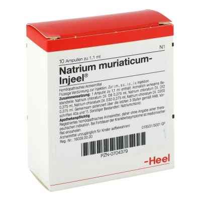 Natrium Muriaticum Injeel Ampullen  bei apo-discounter.de bestellen