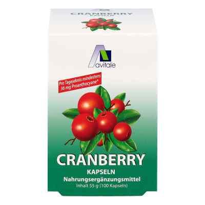 Cranberry Kapseln 400 mg  bei apo-discounter.de bestellen