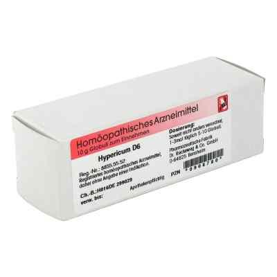 Hypericum D6 Globuli  bei apo-discounter.de bestellen