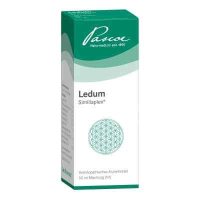 Ledum Similiaplex Tropfen  bei apo-discounter.de bestellen